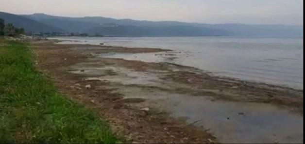 İznik Gölü'nün kurtarılması için önerge!