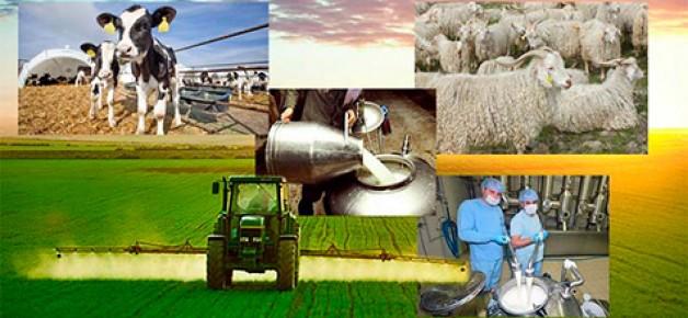2018 yılı tarımsal desteklemeler