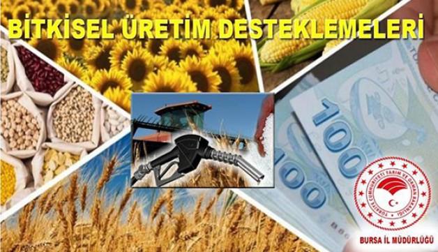 Bitkisel Üretim Desteklemeleri açıklandı!