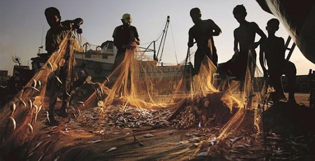 Balıkçılıkta av yasağı başladı!