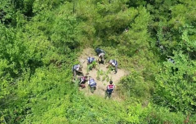Jandarma'dan droneli uyuşturucu operasyonu