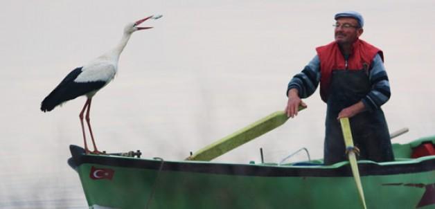 Leylek ile balıkçının hikayesi film oluyor