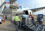 Lojistik A.Ş. ile son sürat ihracat