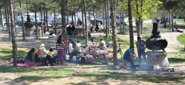 Piknikçilere 'ağaç cezası' uyarısı