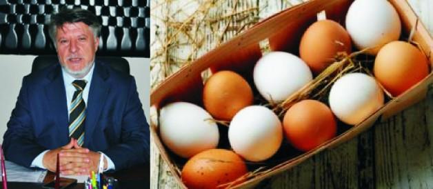Tayar'dan 'yumurta' açıklaması