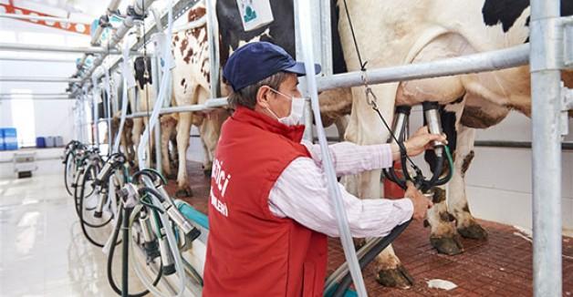 """""""Ulusal Süt Konseyi bu yapıyla devam edemez"""""""