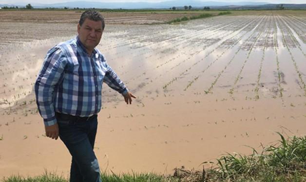 Yağışlar bazı çiftçileri mağdur etti