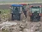 Karacabey'de yağmur çiftçiyi fena vurdu