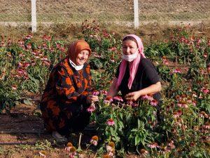 Kadın-çiftçilerimizle-gurur-duyuyoruz-2