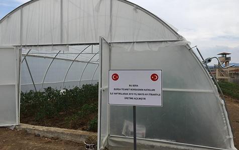 Bursa-E-Tipi-Cezaevi'nde-zirai-üretim-2