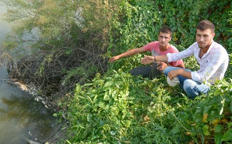 Karadere'de-balık-katliamı-2