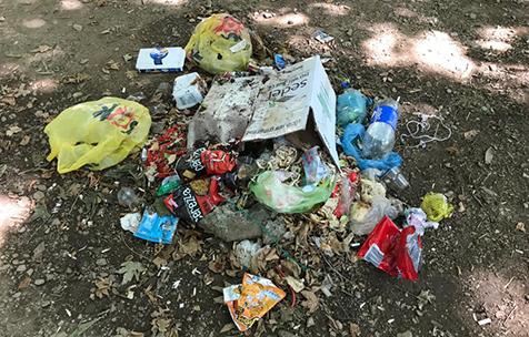 Piknik-alanında-rezaletin-son-perdesi-3