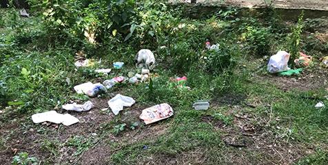 Piknik-alanında-rezaletin-son-perdesi-4